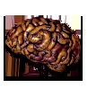 Diablo 2 Brain