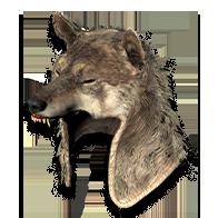 Diablo 2 Wolf Head